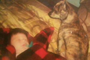 dogs and infants health
